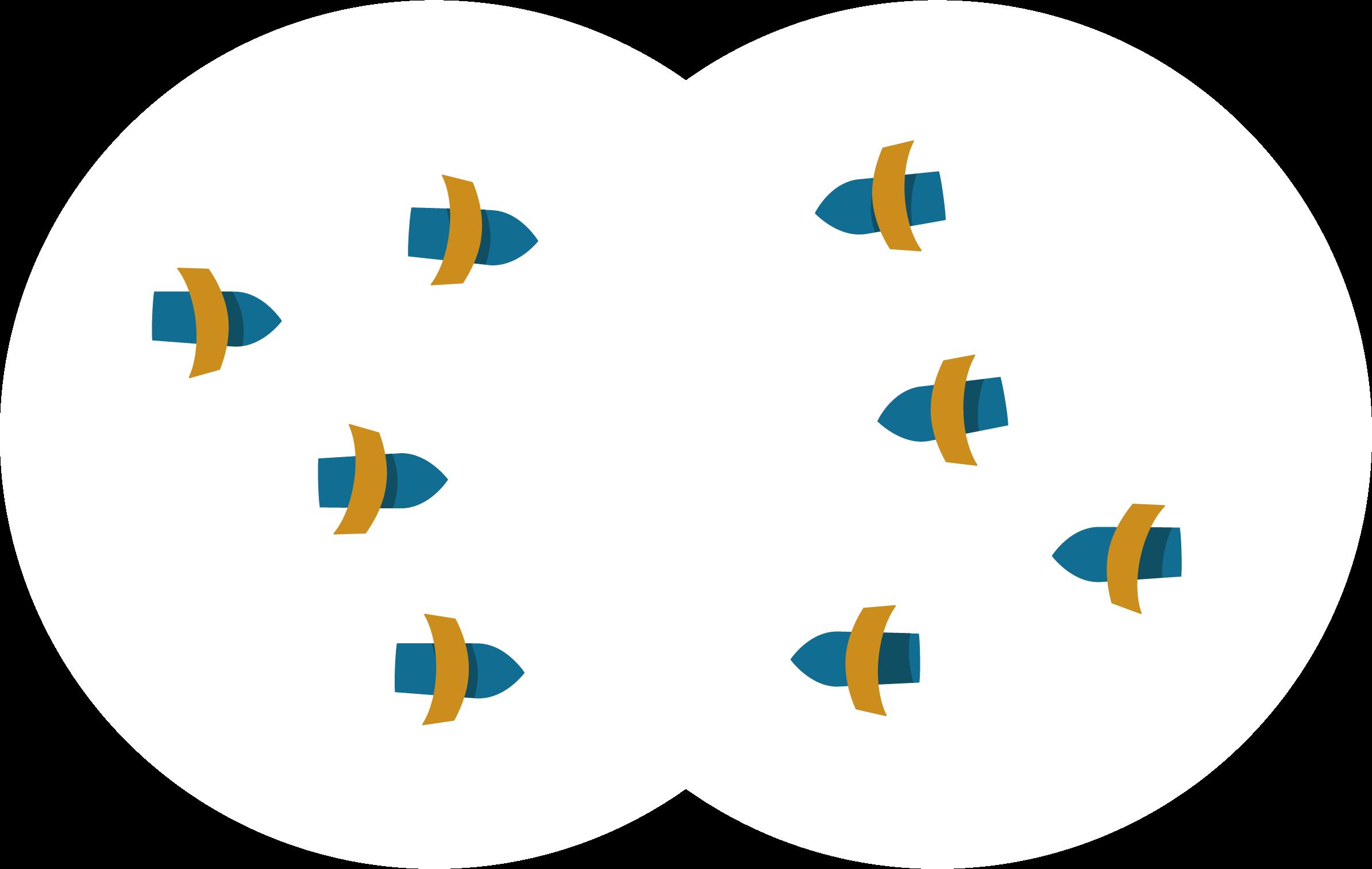 Icon Negociation & Conflict Management